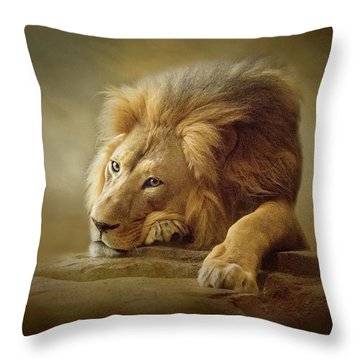 Gentle Soul Throw Pillow