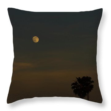 Throw Pillow featuring the photograph Gently by Alex Lapidus
