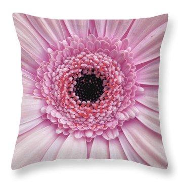 Gerber Rainbow Pink Throw Pillow