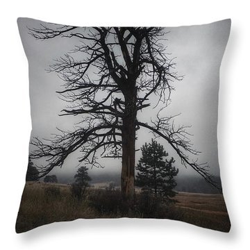 Throw Pillow featuring the photograph Ghostly Snag by Dan Miller