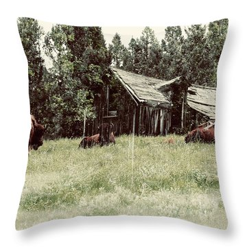 Ghosts Of The Plains Throw Pillow
