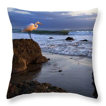 Giant Egret Throw Pillow