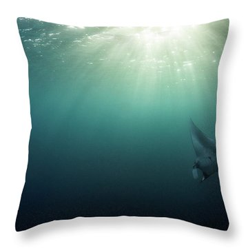 Giant Manta Ray Throw Pillow