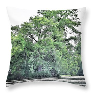 Throw Pillow featuring the photograph Giant River Tree by James Fannin