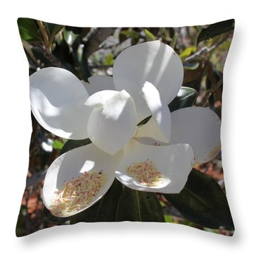 Gigantic White Magnolia Blossoms Blowing In The Wind Throw Pillow