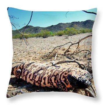 Gila Monster In The Arizona Sonoran Desert Throw Pillow