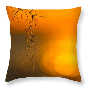 Gilded Moss Throw Pillow