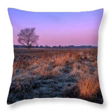 Ginkelse Heide Throw Pillow