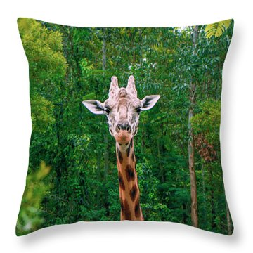 Giraffe Looking For Food During The Daytime. Throw Pillow