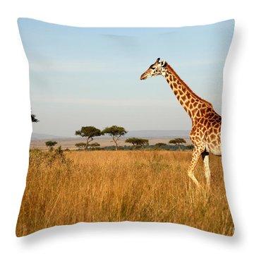 Solitary Throw Pillows