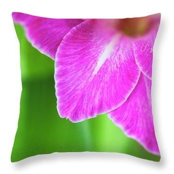 Throw Pillow featuring the photograph Gladiolus Vedi Napoli Petals Abstract by Tim Gainey