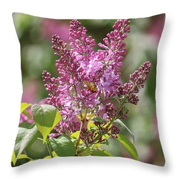 Glorious Lilacs Throw Pillow