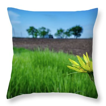 Throw Pillow featuring the photograph Goat's Beard On Nelson Farm II by Jeff Phillippi