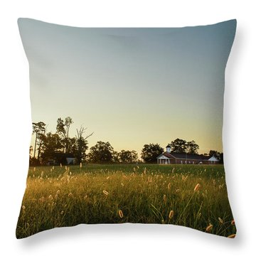 God's Promise Throw Pillow