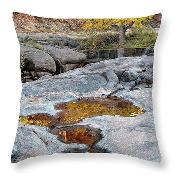 Gold Reflection Throw Pillow