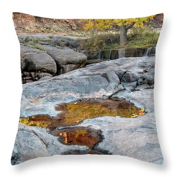Gold Reflection Throw Pillow