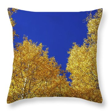 Golden Aspens And Blue Skies Throw Pillow