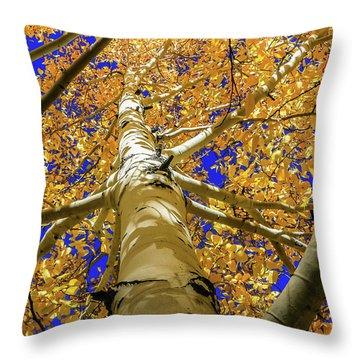 Golden Aspens In Grand Canyon Throw Pillow