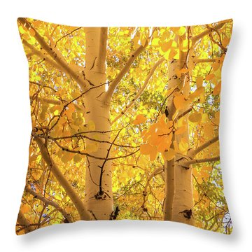 Golden Aspens In Grand Canyon, Vertical Throw Pillow