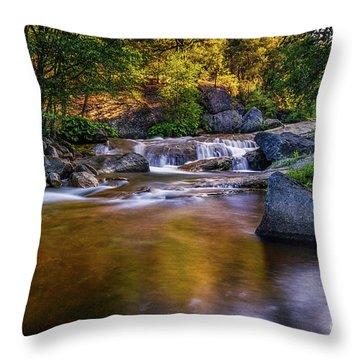 Golden Calm Throw Pillow