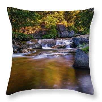 Golden Calm Throw Pillow
