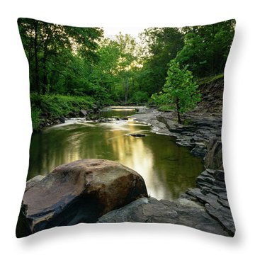 Golden Creek Throw Pillow