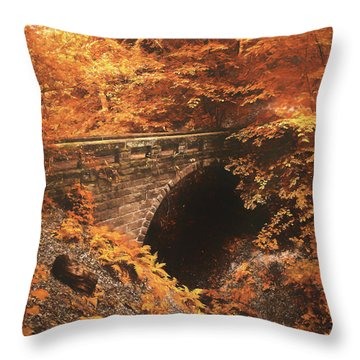 Golden Crossing Throw Pillow