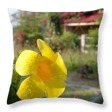 Golden Dew Throw Pillow