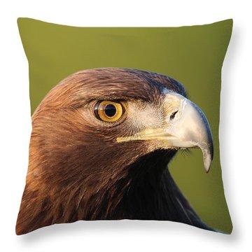 Golden Eagle 5151801 Throw Pillow