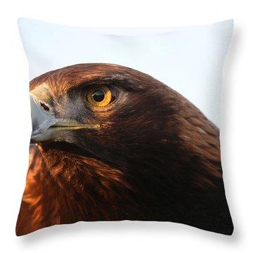 Golden Eagle 5151803 Throw Pillow