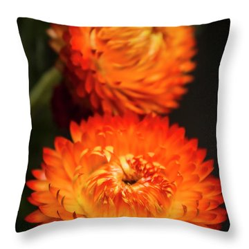 Golden Everlasting Throw Pillow