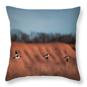 Throw Pillow featuring the photograph Golden Eye by Jeff Phillippi