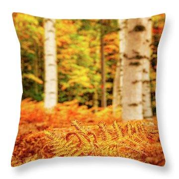 Golden Ferns In The Birch Glade Throw Pillow