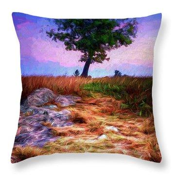Golden Grasses Of Autumn Ap Throw Pillow