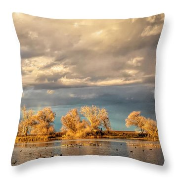 Golden Hour In The Refuge Throw Pillow
