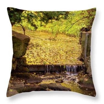 Throw Pillow featuring the photograph Golden Leaf River by Scott Lyons