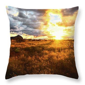 Golden Light Of Southern Arizona Throw Pillow