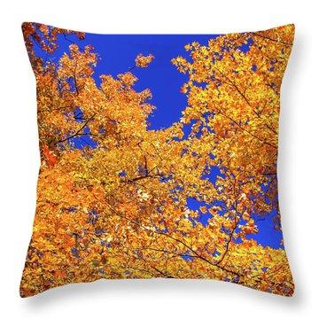 Golden Oaks Throw Pillow