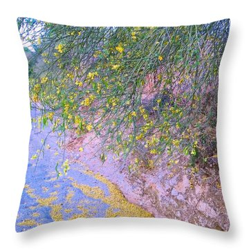 Golden Petals In A Desert Wash Throw Pillow