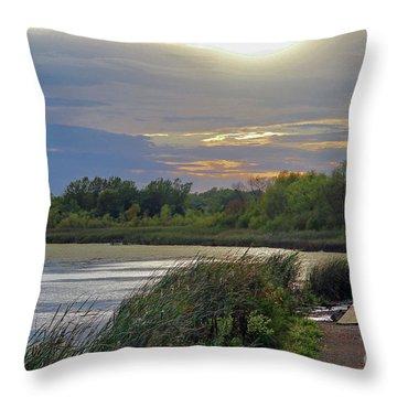 Golden Sunset Over Wetland Throw Pillow