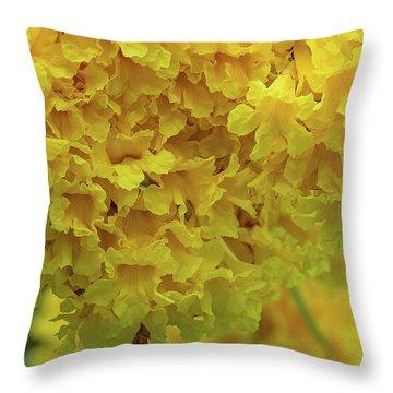 Throw Pillow featuring the photograph Golden Tree, Golden Trumpet Tree Or Tallow Pui Dthn0255 by Gerry Gantt