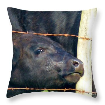 Throw Pillow featuring the photograph Good Morning by Rosanne Licciardi