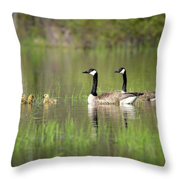Goose Family #5 Throw Pillow