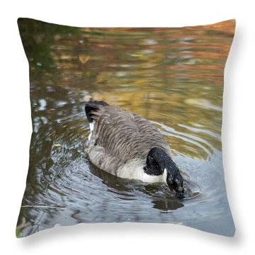 Throw Pillow featuring the photograph Goose Head In Water by Scott Lyons