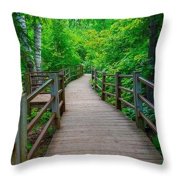 Gooseberry River Trail Throw Pillow