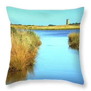 Throw Pillow featuring the photograph Gordon's Pond State Park Panorama by Bill Swartwout Fine Art Photography