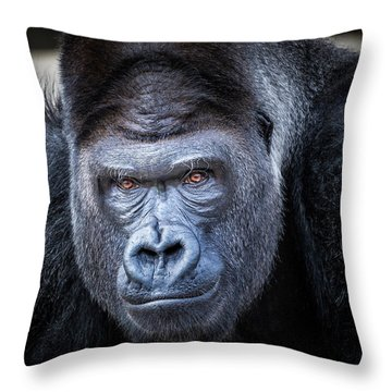 Gorrilla  Throw Pillow