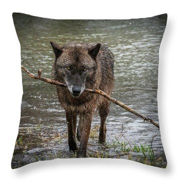 Got The Stick Throw Pillow