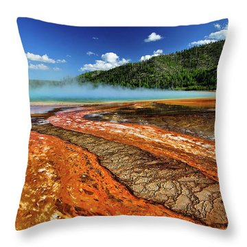 Prismatic Throw Pillows
