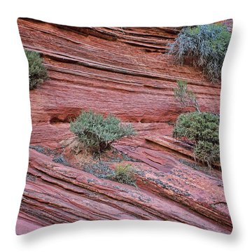 Grand Wash Abstract - No 1 Throw Pillow